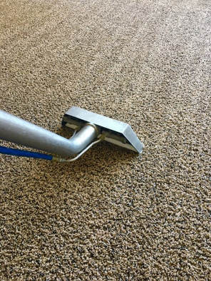 this is a picture of cloverdale carpet cleaning
